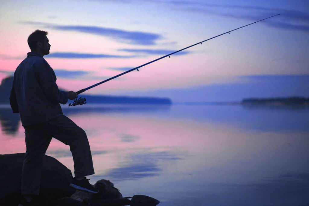 Vor dem Köder Kauf: Welcher Fisch ist dein Zielfisch?